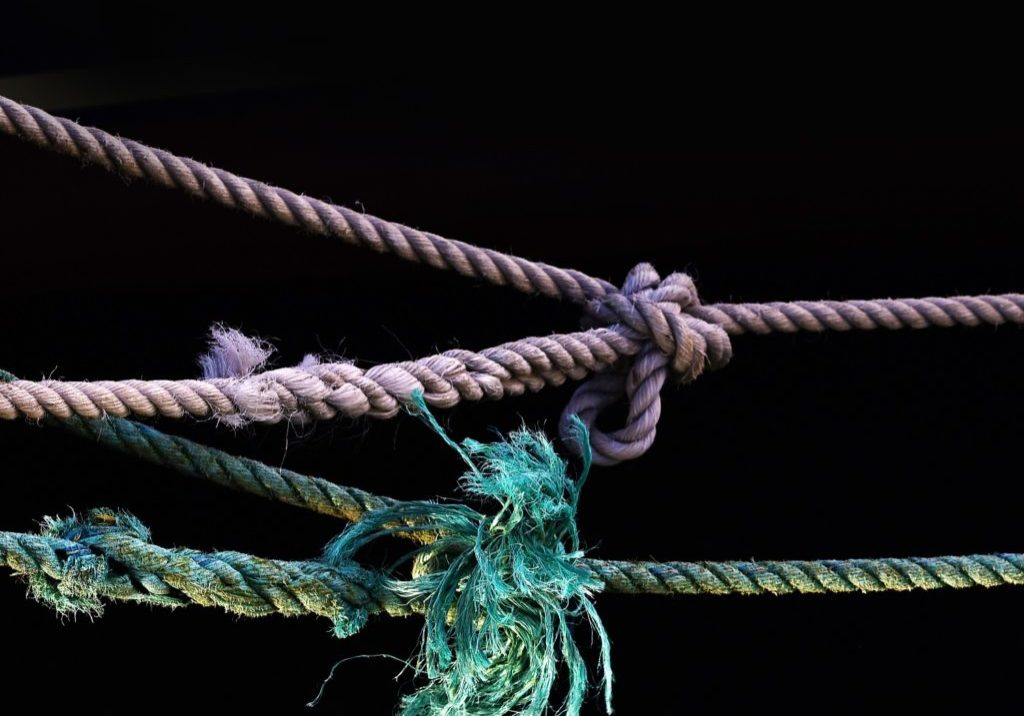 blue and purple ropes